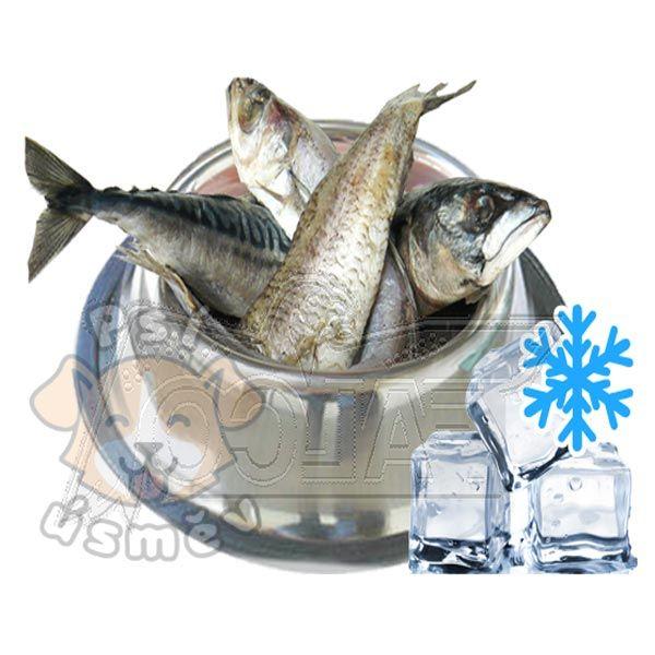 Rybí maso (celé ryby) 6x 1kg
